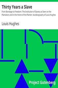 Cover of Thirty Years a Slave From Bondage to Freedom: The Institution of Slavery as Seen on the Plantation and in the Home of the Planter: Autobiography of Louis Hughes