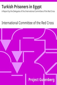 Cover of Turkish Prisoners in Egypt A Report by the Delegates of the International Committee of the Red Cross