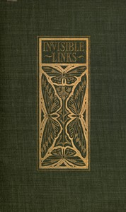 Cover of Invisible Links