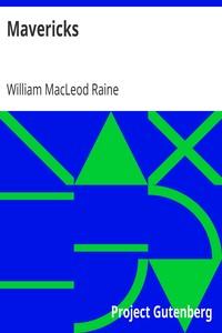 Cover of Mavericks