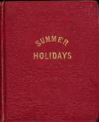 The Summer Holidays: A Story for Children