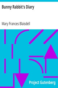 Cover of Bunny Rabbit's Diary