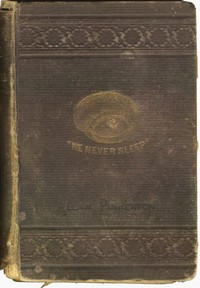 Cover of The Burglar's Fate, and The Detectives