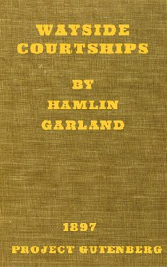 Cover of Wayside Courtships
