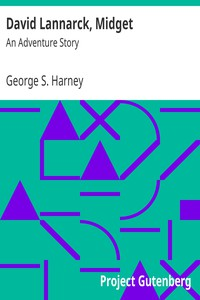 Cover of David Lannarck, MidgetAn Adventure Story