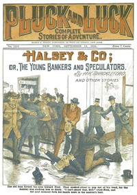 Cover of Halsey & Co.or, The Young Bankers and Speculators