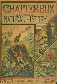 Cover of Chatterbox Stories of Natural History