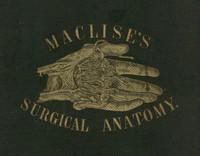 Surgical Anatomy