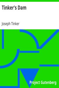 Cover of Tinker's Dam