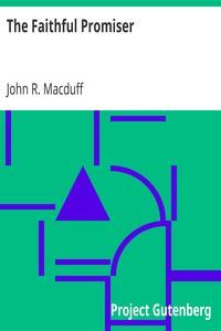 Cover of The Faithful Promiser
