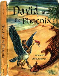 Cover of David and the Phoenix