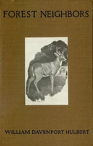 Cover of Forest Neighbors: Life Stories of Wild Animals