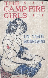 Cover of The Camp Fire Girls in the Mountains; Or, Bessie King's Strange Adventure