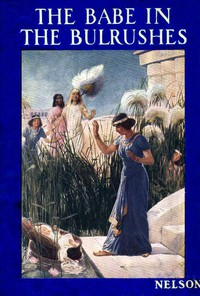 Cover of The Babe in the Bulrushes