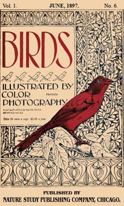 Cover of Birds, Illustrated by Color Photography, Vol. 1, No. 6 June, 1897