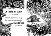 Cover of To Choke an Ocean