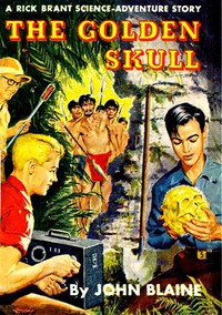 Cover of The Golden Skull: A Rick Brant Science-Adventure Story