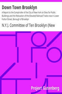 Cover of Down Town Brooklyn A Report to the Comptroller of the City of New York on Sites for Public Buildings and the Relocation of the Elevated Railroad Tracks now in Lower Fulton Street, Borough of Brooklyn