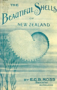 Cover of Beautiful Shells of New Zealand An Illustrated Work for Amateur Collectors of New Zealand Marine Shells, with Directions for Collecting and Cleaning them