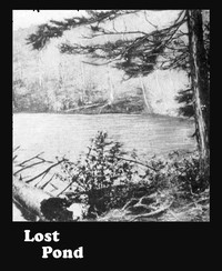 Cover of Lost Pond