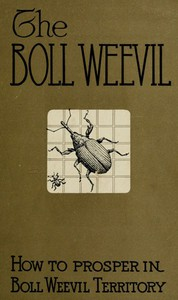 Cover of How to Prosper in Boll Weevil Territory