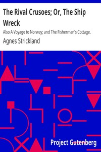 Cover of The Rival Crusoes; Or, The Ship Wreck Also A Voyage to Norway; and The Fisherman's Cottage.