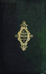 Cover of Great Mysteries and Little Plagues