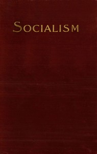 Cover of Socialism and the Social Movement in the 19th Century
