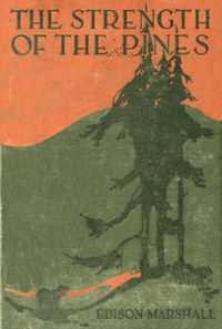 Cover of The Strength of the Pines