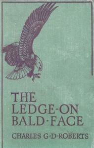 Cover of The Ledge on Bald Face