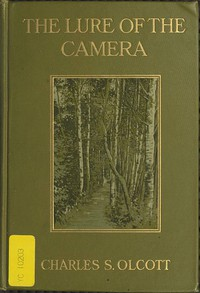 Cover of The Lure of the Camera