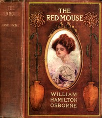 The Red Mouse: A Mystery Romance