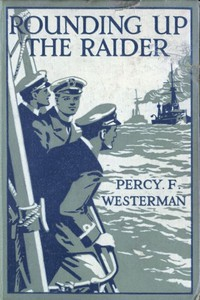 Rounding up the Raider: A Naval Story of the Great War