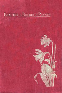 Cover of Beautiful Bulbous Plants for the Open Air