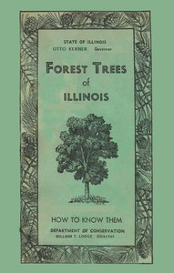 Cover of Forest Trees of Illinois: How to Know Them