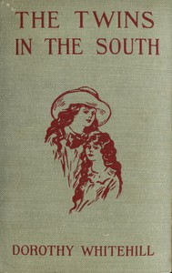 Cover of The Twins in the South