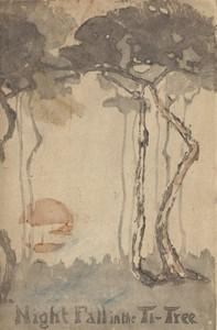 Night Fall in the Ti-Tree