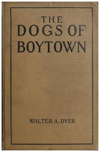 Cover of The Dogs of Boytown