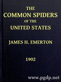 Cover of The Common Spiders of the United States