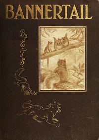 Cover of Bannertail: The Story of a Graysquirrel