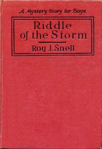 Riddle of the StormA Mystery Story for Boys