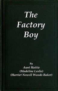 Cover of The Factory Boy