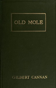 Cover of Old Mole Being the Surprising Adventures in England of Herbert Jocelyn Beenham, M.A., Sometime Sixth-Form Master at Thrigsby Grammar School in the County of Lancaster