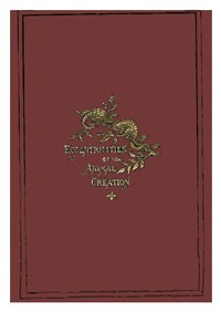 Cover of Eccentricities of the Animal Creation.