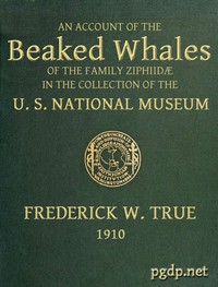 The Beaked Whales of the Family Ziphiidae An Account of the Beaked Whales of the Family Ziphiidae in the Collection of the United States Museum...