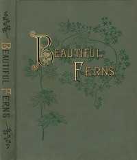 Cover of Beautiful Ferns