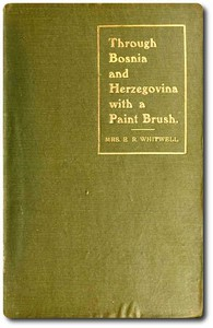 Cover of Through Bosnia and Herzegovina with a Paint Brush