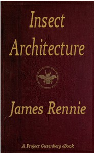 Cover of Insect Architecture
