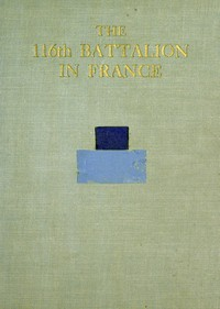 Cover of The 116th Battalion in France