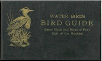 Cover of Bird Guide: Water Birds, Game Birds, and Birds of Prey East of the Rockies